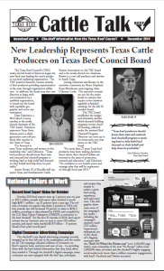 cattle talk december 2014